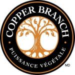Franchise COPPER BRANCH